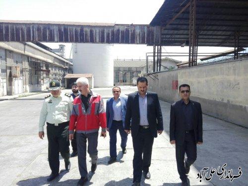 بازدید هدایتی کتولی فرماندار از مراکز خرید کلزا در شهرستان علی آبادکتول