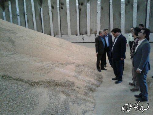 بازدید فرماندار از سیلوها و مراکز خرید گندم شهرستان علی آبادکتول