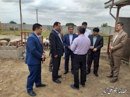 بازدید فرماندار و مدیرعامل صندوق کارآفرینی امید از طرحهای اشتغال روستایی