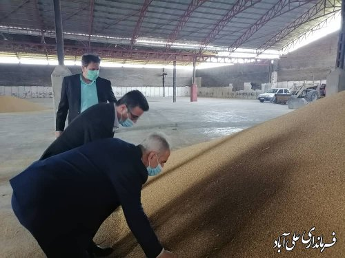 بازدید فرماندار از انبارهای ذخیره سازی گندم و محصولات کشاورزی شهرستان علی آبادکتول