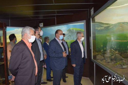 نمایش عظمت خالق زیباییها در موزه تاریخ طبیعی شهرستان علی آباد کتول