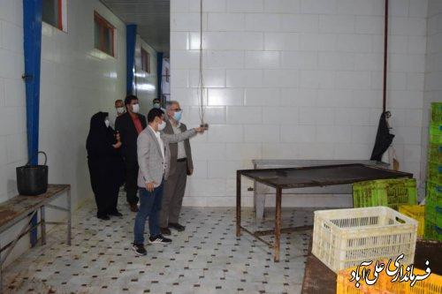 بازدید شبانه فرماندار علی آبادکتول از کشتارگاه صنعتی مرغ بیتامین